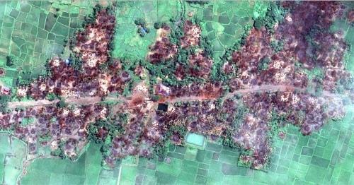 Снимок со спутника сожженной деревни  Чейн Хар Ли в Мьянме Фото: © DigitalGlobe 2017, https://www.hrw.org