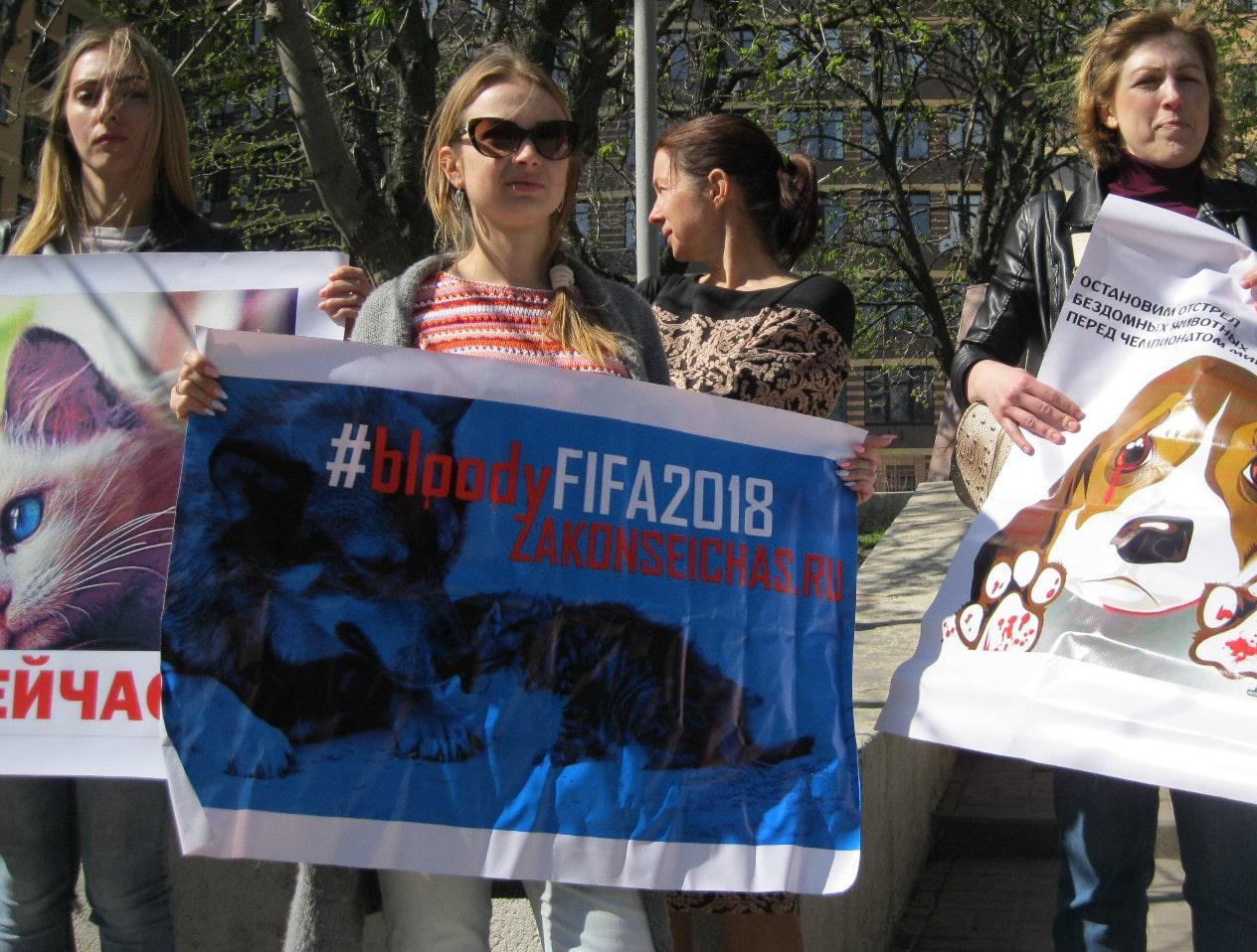 ВКраснодаре пройдёт митинг зоозащитников «Закон нужен натекущий момент!»