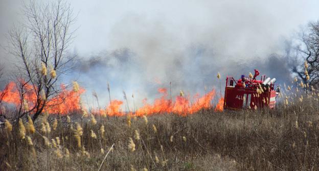 Около 300 человек привлечены к тушению лесных пожаров на Кубани