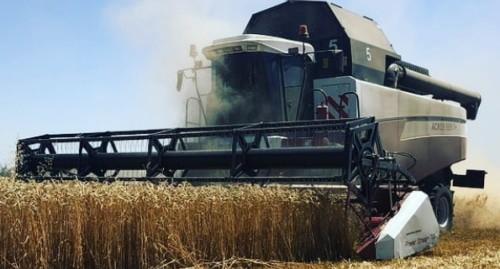 Минсельхоз Адыгеи отчитался о рекордном урожае зерна
