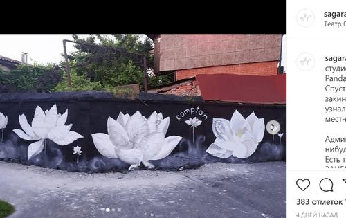 Конфликт авторов стрит-арта во Владикавказе привлек внимание пользователей сети